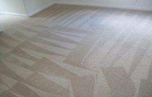 Carpet Cleaning DMV