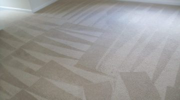 Carpet Cleaning DMV