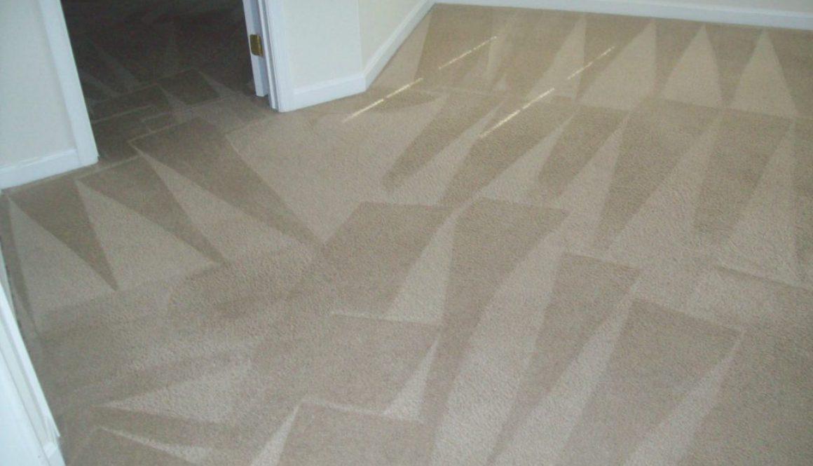 Lorton VA Carpet Cleaning