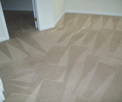 Lorton VA Carpet Cleaning