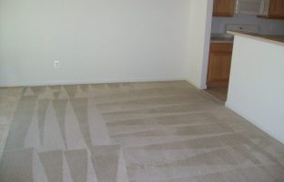 Removals Stains Carpet