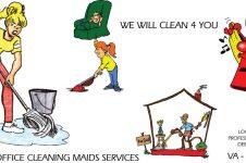 Carpet Cleaning Virginia, Washington D.C., Maryland