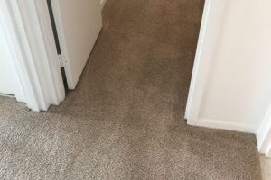 Apartment Carpet Cleaning - Cleaned After Alexandria VA 1