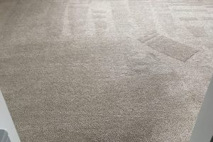 Apartment Carpet Cleaning - Cleaned After Alexandria VA 10
