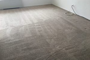 Steam Carpet Cleaning Alexandria VA Before After Pics Video