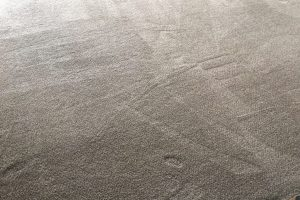 Apartment Carpet Cleaning - Cleaned After Alexandria VA 14