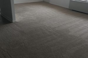 Apartment Carpet Cleaning - Cleaned After Alexandria VA 4