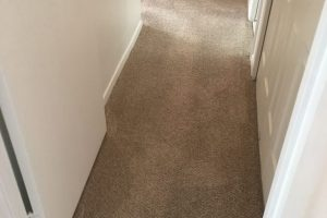 Apartment Carpet Cleaning - Cleaned After Alexandria VA 7