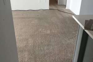 Apartment Carpet Cleaning - Cleaned After Alexandria VA 9