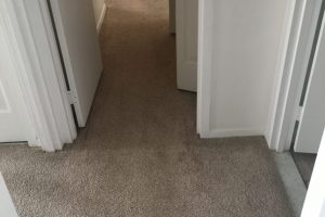 Apartment Carpet Cleaning - Dirty Before Alexandria VA 8