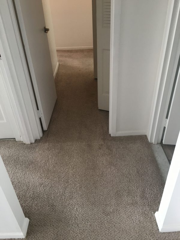 Apartment Carpet Cleaning Dirty Before Alexandria Va 8