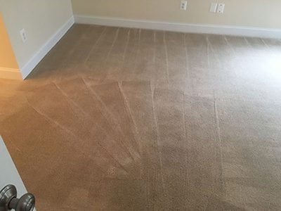 Herndon VA Carpet Cleaning