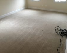 Virginia Carpet Cleaning Services