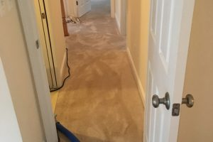 Herndon-VA-Carpet-Cleaning-services