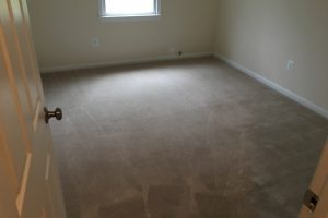 Springfield-VA-Carpet-Cleaning