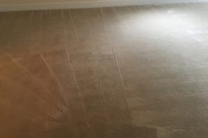 Sterling-VA-Carpet-Cleaning