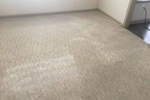 Fredericksburg VA Carpet Cleaning Fairfax