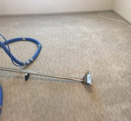 Cleaning Carpet Services