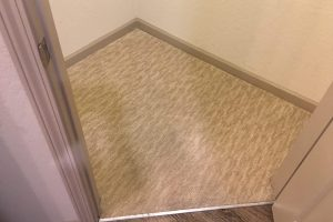 Fredericksburg VA Carpet Cleaning Silver Spring MD