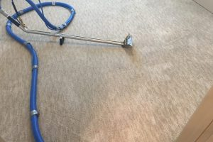 Fredericksburg VA Carpet Cleaning Spotsylvania