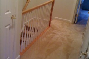 Stafford VA Carpet Cleaners