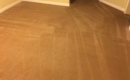 Carpet Cleaning Fredericksburg Virginia