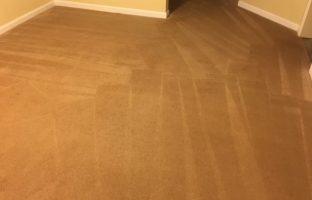 Carpet Cleaning Fredericksburg Virginia