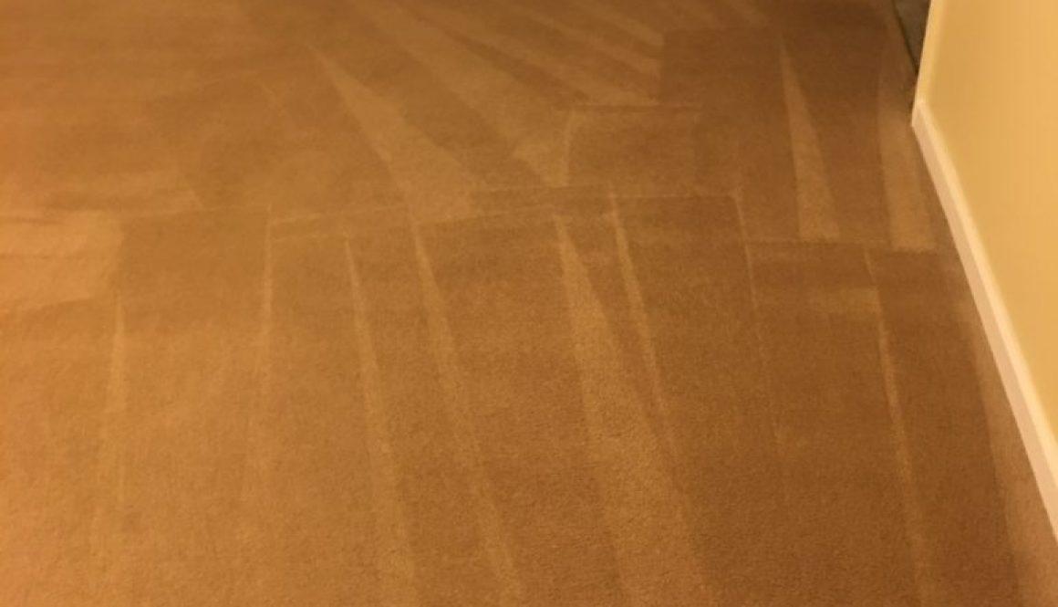 Woodbridge Virginia Services Archives ⋆ Va Carpet Cleaning