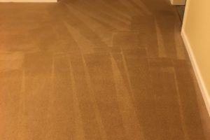 Woodbridge VA Carpet Cleaning