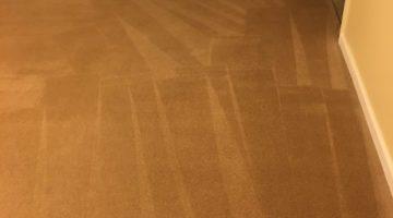 Woodbridge VA Carpet Cleaning