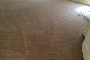 Haymarket VA Carpet Cleaning