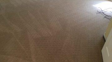 Haymarket VA Carpet Cleaning