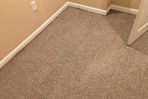 VA Alexandria Carpet Clean