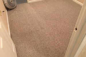 VA Alexandria Carpet Cleaning