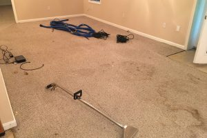 VA Bethany Beach Carpet Clean