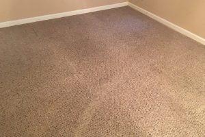 VA Cheap Carpet Cleaners