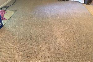 VA Clean Carpets