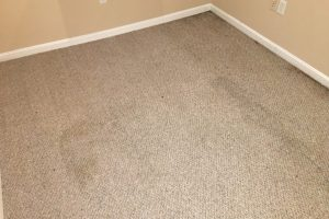 VA DC MD Carpet Cleaners
