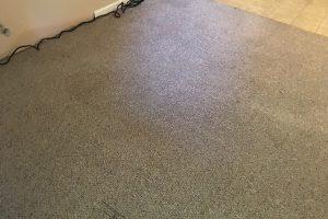 VA Northern Carpet Clean