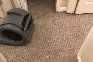 VA Spotsylvania Carpet Clean