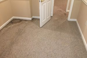 VA Stafford Carpet Cleaning