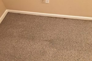 VA Steam Cleaning Carpets