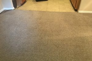 VA Steaming Carpets