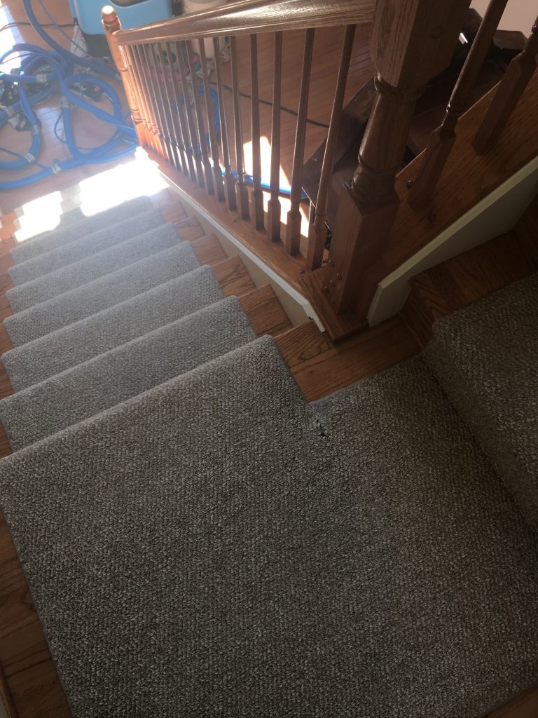 Stafford VA Carpet Cleaning