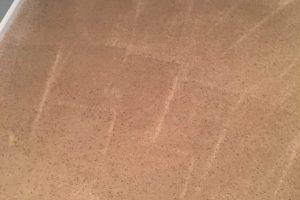Stafford VA Carpet Cleaning