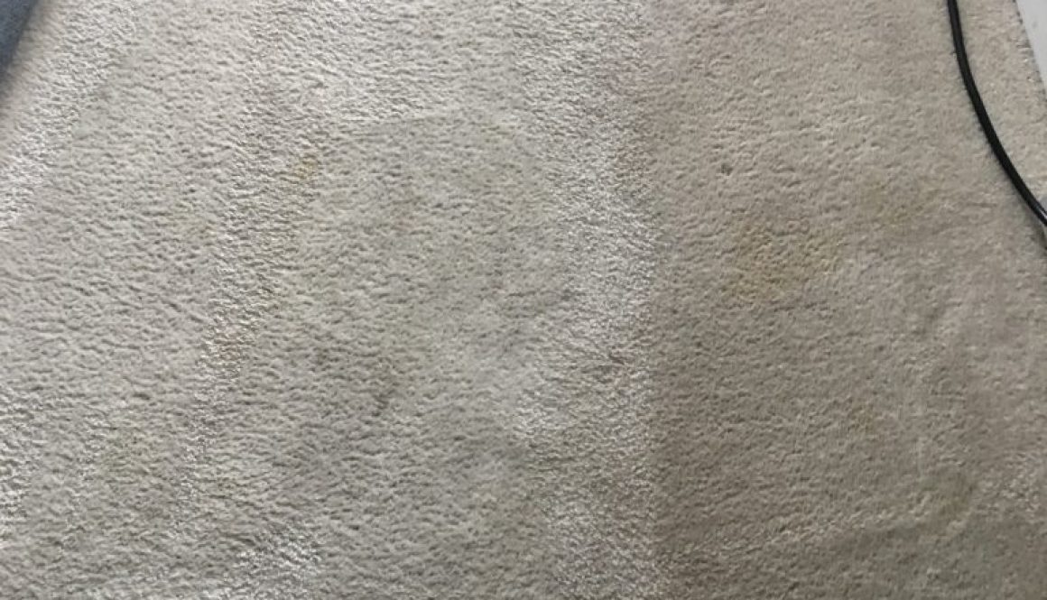 Carpet Cleaning Spotsylvania