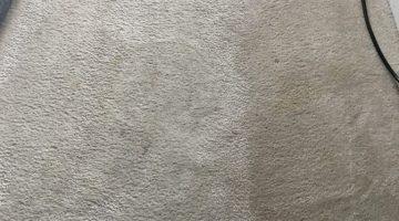 Carpet Cleaning Spotsylvania