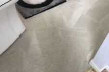 NOVA Carpet Cleaning