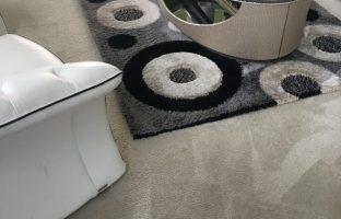 Steam Carpet Cleaning DMV