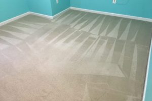 Carpet Cleaning Spotsylvania VA